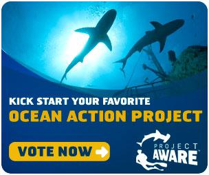 海洋保育行動計畫