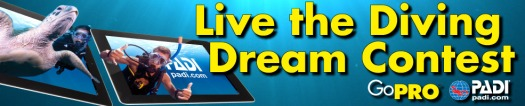 banner PADI Live the Diving Dream Contest