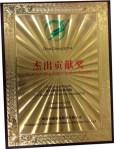 Dive China 2014 Award (2)