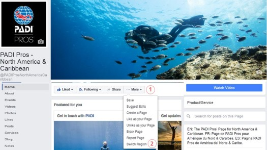 padi-pros-global-screenshot
