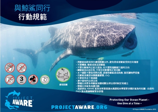 whale shark code of conduct-TC